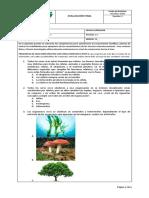 evaluación de periodo grado 5 (1)