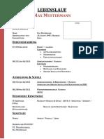 Lebenslauf-für-Elektroinstallator-Gebäude-1