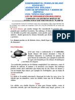 NIVELES DE ORGANIZACION BIOLOGICA iNFORMATICA Y ADMON DE EMPRESA