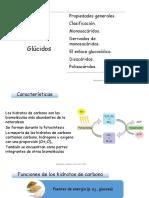 Tema 2 Glúcidos.pdf