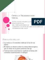 Clase 13. Transducción óptica