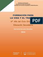 GUIA FVT 6 ANO 2014- VERSION INTEGRAL.pdf
