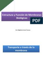 Membrana plasmatica 2020 _2.pdf