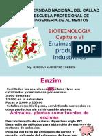 CAPITULO VI-BIOTECNOLOGIA ENZIMAS EN LOS PRODUCTOS INDUSTRIALES (1)