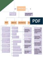 democracia, escenario 5 (1).docx