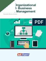 busting-organizational-silos-with-BPM