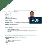 BRINDOU YAO CAMILLE CV.docx