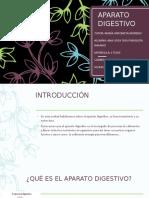 aparatodigestivo-200309003655 (1)