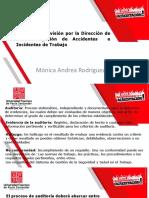 AUDITORIAS Y REVISION POR ALTA DIRECCION AT