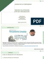PRINCIPIO AUTONOMÍA.pptx