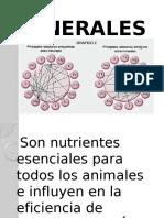 MINERALES EN LA DIETA ANIMAL.pptx