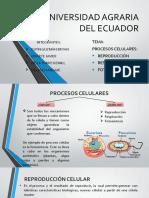 Expo_ProcesosCelulares_Biologia.pptx