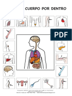 El_cuerpo_humano.pdf
