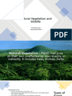 Natural Vegetation and Wildlife.pptx