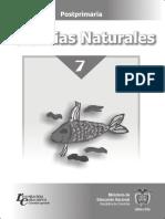 c n 7° postprimarm.pdf