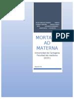 Mortalidad materna trabajo