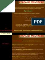 ETAPE DE MENTINERE