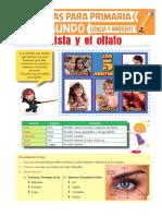 primaria ojo y nariz