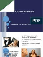 A - La aproximación Inicial - Guillem Feixas y Ma.Teresa Miró
