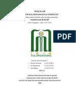 makalah sosiologi hukum