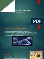 BIOTECNOLOGIA MICROBIANA GENERALIDADES