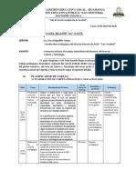 Informe Trabajo Domiciliario Geno