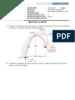 PRACTICA 3 ARCOS.docx