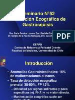 seminario-52_-evaluacion-ecografica-de-gastrosquisis_archivo