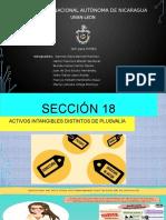 SECCION 18 Y 19 AJUSTADA