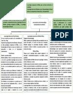 ESCUELAS DE CORTE FENOMENOLOGICO