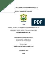 TESIS SINARAHUA 30 07 2019.pdf