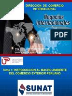 Tema 1 Intro Al Macro Ambiente Del Comex Peruano