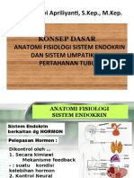 Anfis Endokrin.ppt