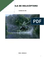 Apostila de Teoria de Vôo - Helicóptero PPH PCH - Professor  Sérvulo