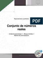 Razonamiento_cuantitativo_U1_B1_profundizacio_conjunto_numero_reales