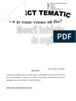proiect_tematic_meserii_20172018.doc