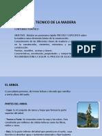 La Madera ETCAR - Walter Gonzalez 06JUN09