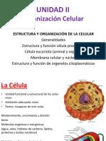 Unidad 2 - Biologia General.pdf