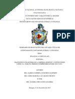 17376 (1).pdf