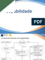 6 - Capabilidade - V2012.pdf