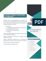Informe del Sistema Financiero Colombiano Enero 2020