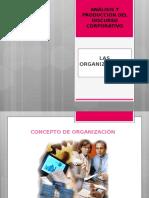 Material organización y estructura-1.ppt