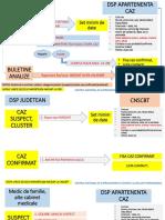 Algoritm de raportare Cazuri COVID-19.pdf