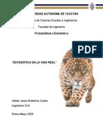 Investigación_Adrian_Robertos.docx