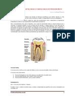 Resumo_anatomia-histologia-e-fisiologia-do-periodonto.pdf