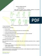 Sistema Articular - Resumo