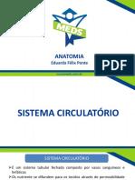 Sistema Circulatório - Slides (1).pdf