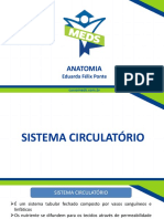 Sistema Circulatório - Slides.pdf