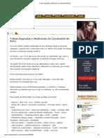 Folhas Sagradas e Medicinais do Candomblé de Ketu.pdf