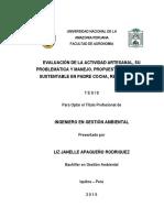 TESIS PARA LIBRO LIZ JANELLE APAGUEÑO RODRIGUEZ.pdf